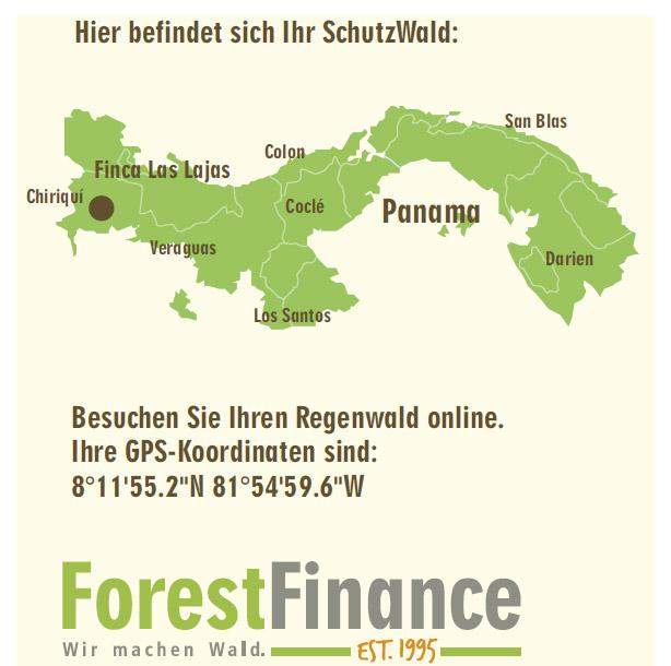 etree-forest-finance-schutzwald